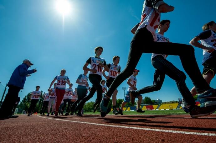 Благодаря комплексу ГТО более половины дагестанцев занимаются физкультурой и спортом | Новости |